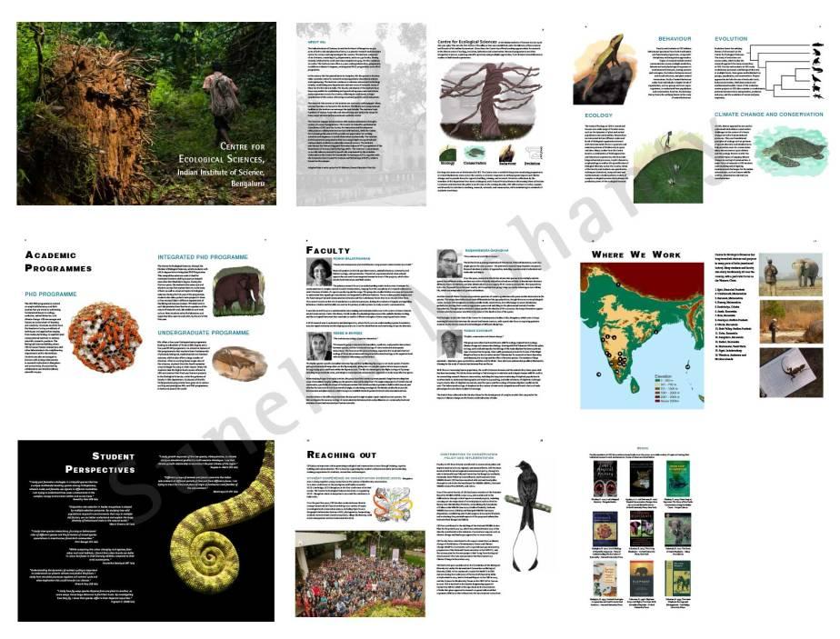 CES_brochure_blog