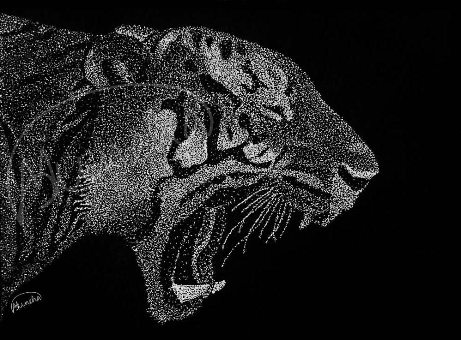 Yawning_tiger
