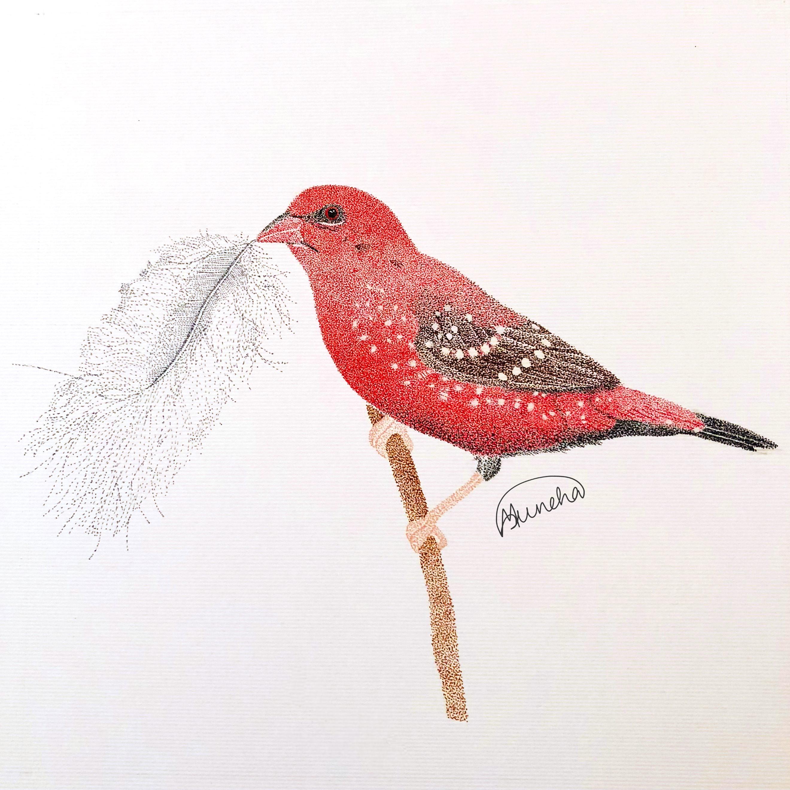 RedMunia